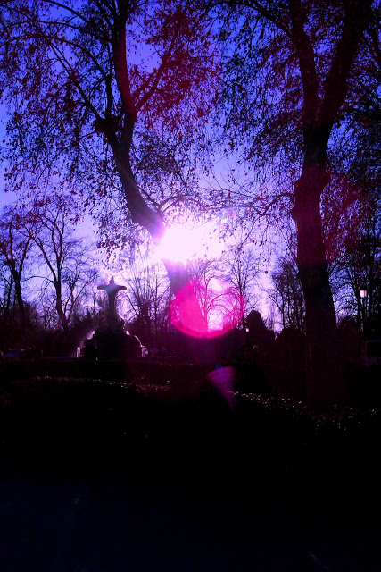 campo violeta y luces